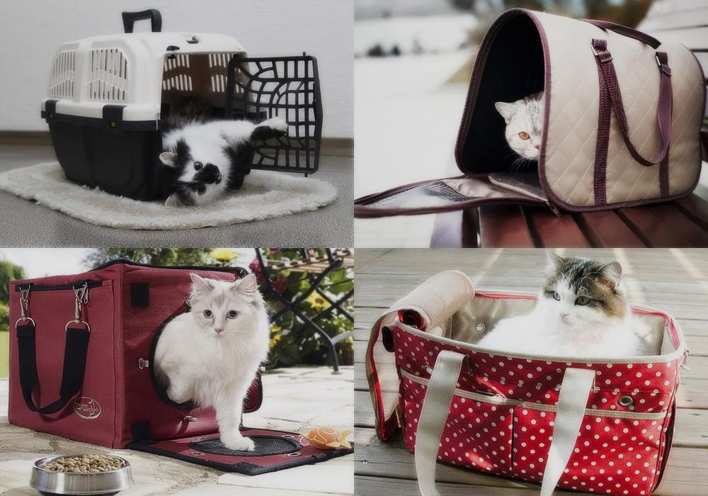 Какой должна быть идеальная переноска для кошек
