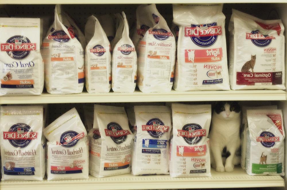 Наиболее необходимые товары для кошек и котов